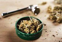 Efectos Deseados en el Cuerpo por la Planta de Marihuana