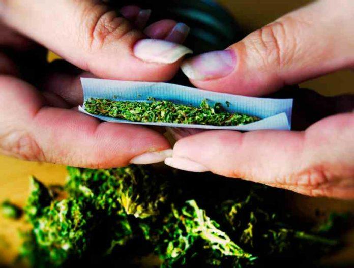 Consumo de Marihuana y Tabaco, una Doble Adicción
