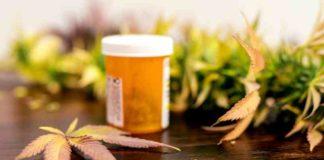 ¿La Marihuana puede Ayudar a Combatir las Migrañas?