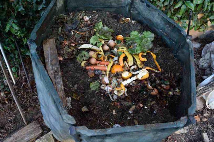 ¿Cómo hacer Compost para nuestras Plantas de Marihuana?
