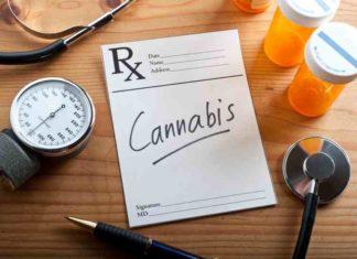 Marihuana Medicinal Ayuda a Paliar los Dolores