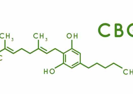 CBG un Cannabinoide de la Marihuana con Potencial Terapéutico