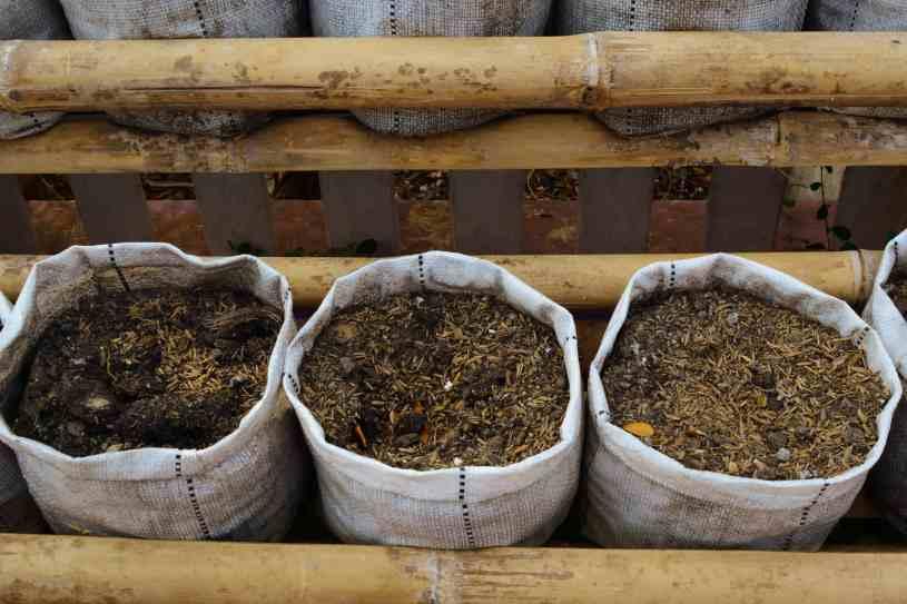 Preparar el Sustrato para el Cultivo de Plantas de Marihuana