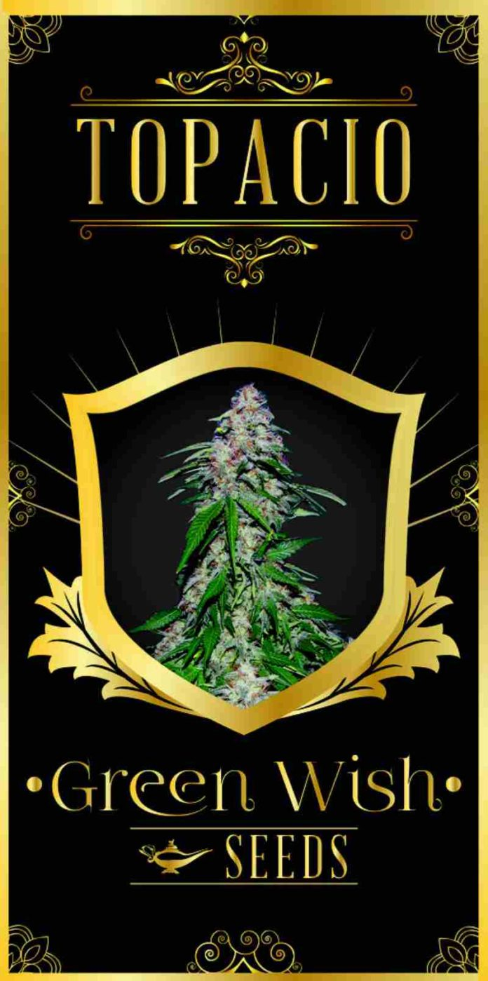 Topacio - Semilla de Marihuana Topacio del Banco Green Wish Seeds