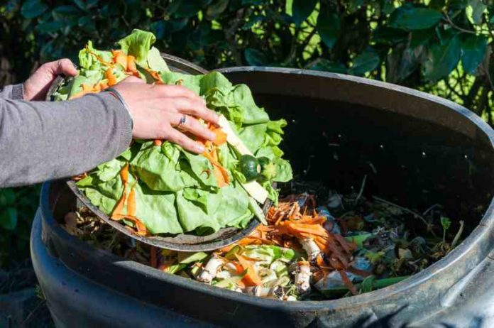 Compostaje - ¿Cómo Tener Éxito a la hora de Preparar el Compost?