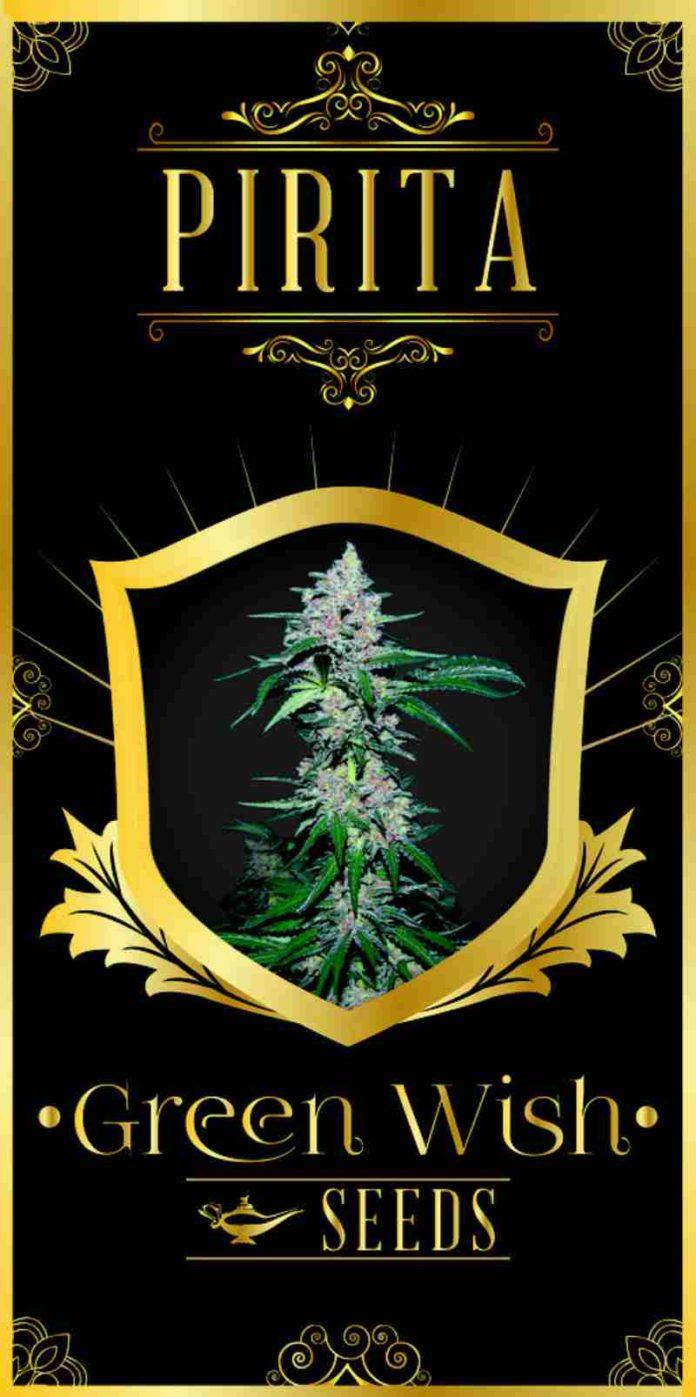 Pirita - Semilla de Marihuana Pirita de Green Wish Seeds