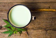 ¿Cómo hacer leche de Marihuana? - ¿Cómo hacer leche Cannabica?