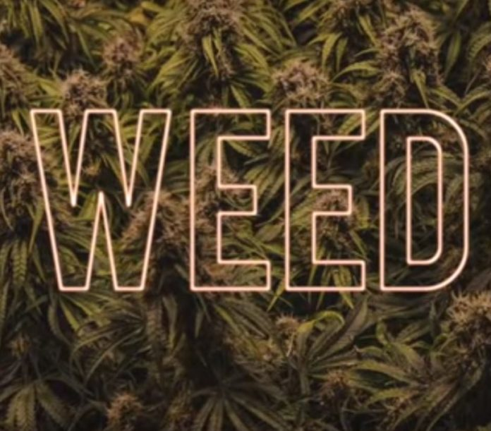 Sensaciones que Notamos al Consumir Marihuana