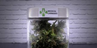 Marihuana Mata las Células Cancerosas - AceiteRick Simpson