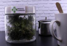La marihuana Puede Reducir el Crecimiento Tumoral