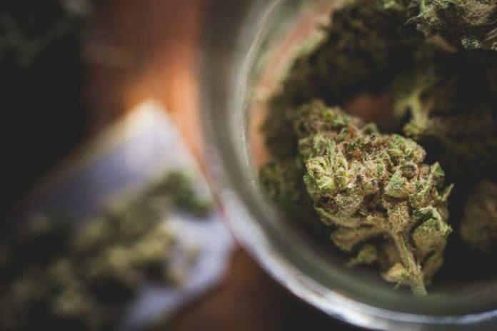 La mejor Forma de Consumir Marihuana