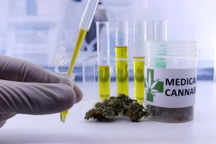 Cannabinoides una Ayuda contra el Cáncer