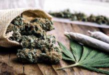 Posibilidad de Adicción a la Marihuana