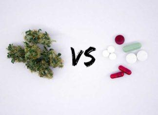 Dolores de Cabeza Solucionarlos con Marihuana Medicinal