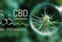 Aceite orgánico de CBD de calidad