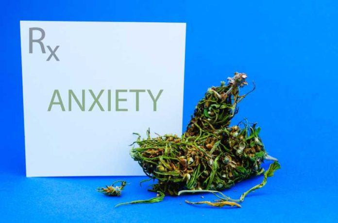 La Abstinencia de Fumar Marihuana Provoca Ansiedad