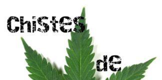 Chistes de Marihuanos - Chistes de Porretas Graciosos