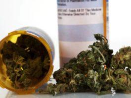 Acusaciones Malintencionadas sobre lo Malo de la Marihuana