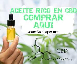 Aceite de Marihuana CBD
