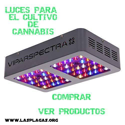 Luces para el Cultivo de Marihuana
