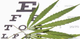 Marihuana Medicinal para Reducir la Presión Intraocular