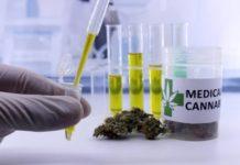 La Marihuana Medicinal es Efectiva para Reducir las Náuseas
