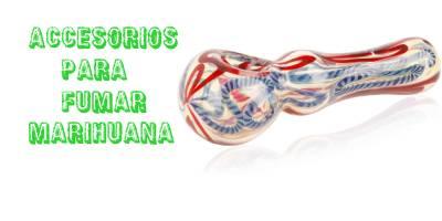 https://www.parafernaliademarihuana.com/cultivar-marihuana/