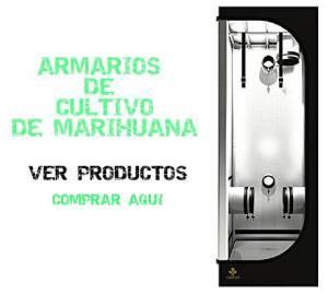 armarios-cultivo-marihuana-cannabis