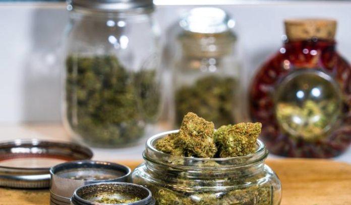 Controlar los Niveles de THC, CBD y CBN en los Cogollos de Marihuana