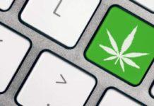 Software ERP para la Industria de la Marihuana Legal
