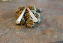 Variedades de Marihuana para Dormir Bien