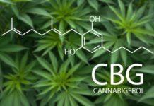 CBG o Cannabigerol puede Mejorar nuestra Salud