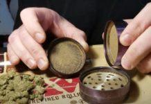 Molinillos de Marihuana - ¿Qué son los Molinillos de Marihuana?