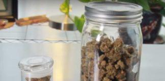 Almacenar de una Forma Correcta la Marihuana
