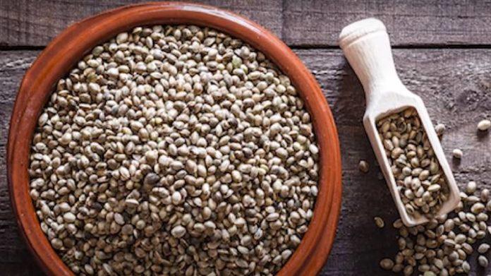 Beneficios para la Salud de las Semillas de Cáñamo