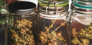 La Mejor Forma de Almacenar la Marihuana