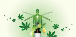 Microdosificación en la Marihuana Medicinal