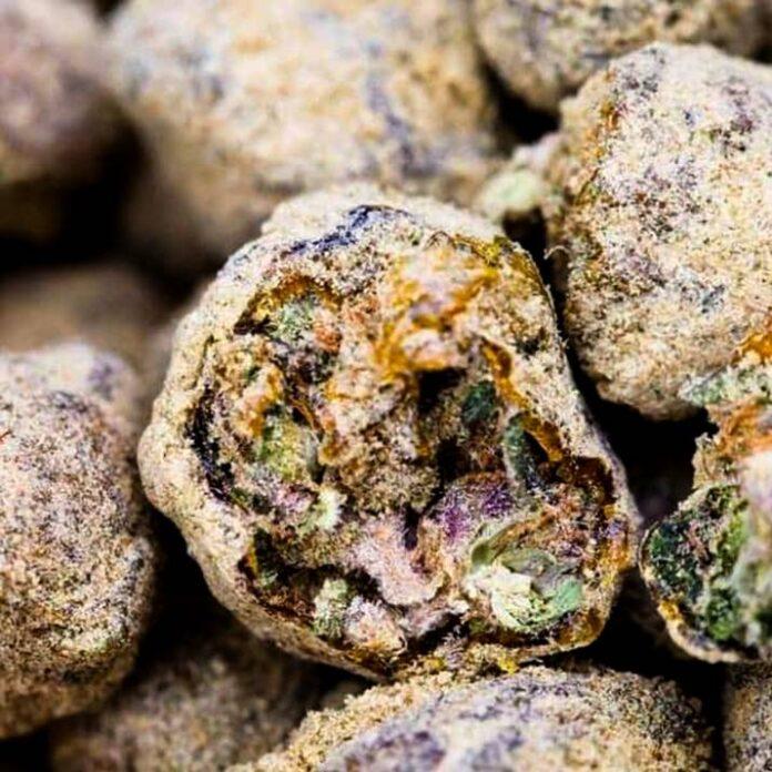 Auto Moon Rock - Semilla de Marihuana Auto Moon Rock de Divine Seeds