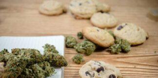 Galletas de Marihuana con Pepitas de Chocolate