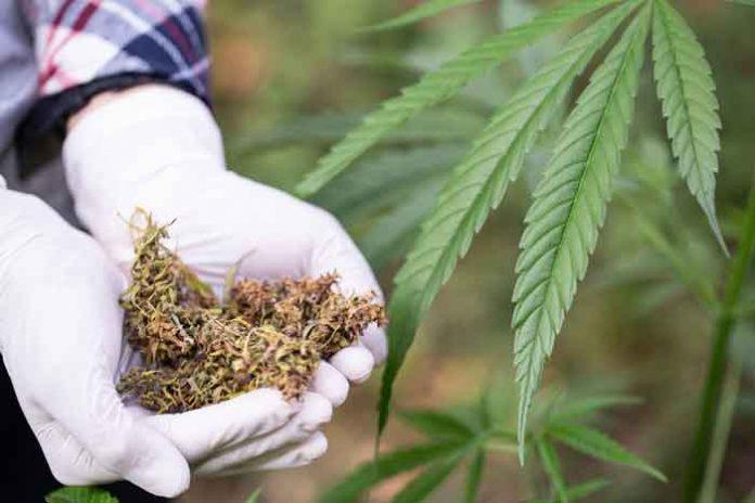 Beneficios de la Marihuana Medicinal para Pacientes con VIH